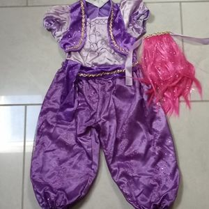 Shimmer and Shine 3T/4T costume w hair piece